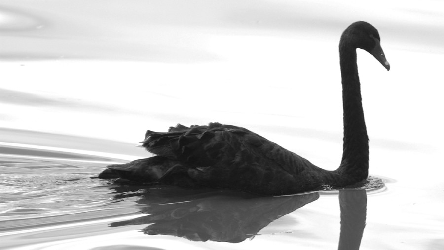 Black Swans and the Future of Energy by Paul Polak and Krish Desai